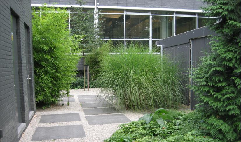 Bedrijfstuin Alkmaar